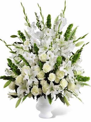 Floreria En Veracruz Envia Flores A Domicilio